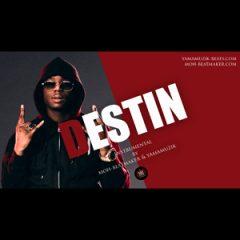 Ninho Type Beat | Destin