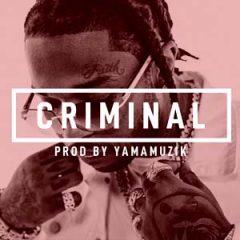 Pop Smoke Type Beat   Criminal